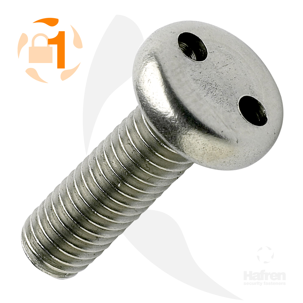 M3 x 10mm Pan Head A2 Stainless Steel 2-Hole Machine Screw